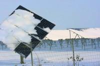 Wind und Sonne machen reich – und Strom immer teurer