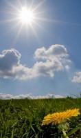 Klimaforschung: Sonne möglicherweise auch für Helligkeit verantwortlich?